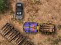 Online Game Timber Lorry Driver