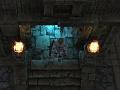 Dungeon Conqurerors