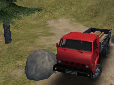 Truck Driver Crazy Road