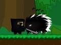 Online hra Hidden Valley Ninja