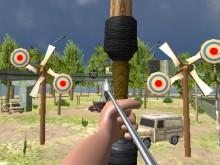 Juego en línea Archery Expert 3D