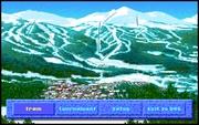 Juego en línea The Games - Winter Challenge