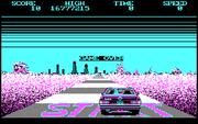 Online hra Crazy Cars